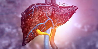 Therapeutic potential of phages in autoimmune liver diseases